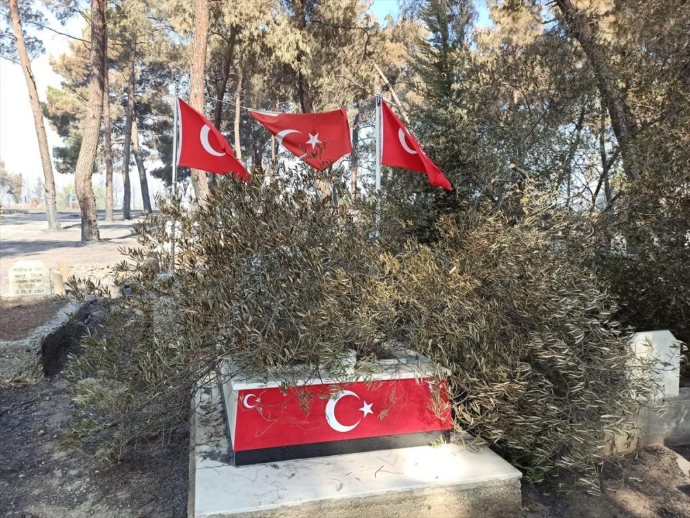 Adana'daki orman yangınında hasar oluşan mezarlıkta şehit kabri ve Türk bayrakları zarar görmedi